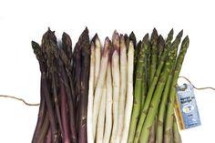 Les asperges et les cerises de terre sont les principaux produits de cette dynamique entreprise. On les retrouve sous leur marque de commerce Primera qui est un gage de qualité et de fraîcheur, tant en épicerie qu'à la ferme. Courge Spaghetti, Commerce, Vegetables, Asparagus, Cherries, Business, Farm Gate, Products, Veggies