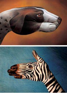 Finger Art - Dog and Zebra