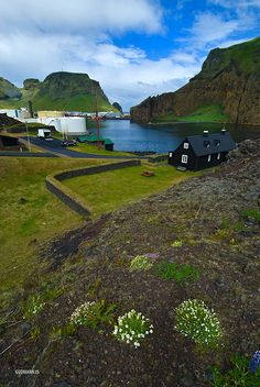Iceland – Vestmannaeyjar by Gudmann, via Flickr