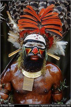 Papua New Guinea.   Guerrero Melpa/ Melpa warrior. Baiyer River. Western Highlands © Pedro Saura