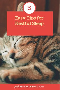 Try these easy hacks to fix your sleep issues and insomnia. Insomnia and other sleep disorders are getting common these days. Simple tips for restful sleep Insomnia Help, Insomnia Causes, Insomnia Remedies, Anxiety Tips, Stress And Anxiety, Sleep Journal, Sleep Better Tips, 8 Hours Of Sleep, Sleep Issues