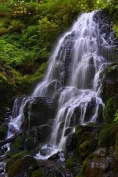 Fairy Falls ~ Oregon