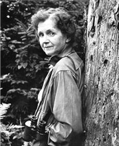 Rachel Carson. This woman is an ecological hero. Her book, Silent Spring, is a classic about the dangers and persistant use of pesticides and the health and ecological dangers they can cause. Her book led to policies to protect the public. She also worked for cleaning up our oceans, saving wild places, and protecting species.