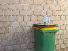 4 Things You Didn't Know You Could Recycle
