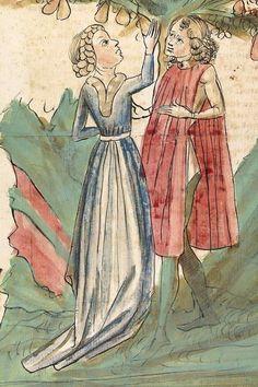 Konrad von Megenberg Das Buch der Natur — Hagenau - Werkstatt Diebold Lauber, um 1442-1448? Cod. Pal. germ. 300 Folio 257v
