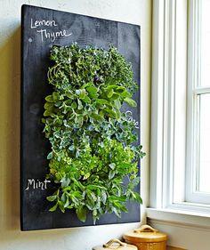 GroVert Chalkboard Wall Planter.