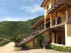 Vina Santa Cruz, #Colchagua