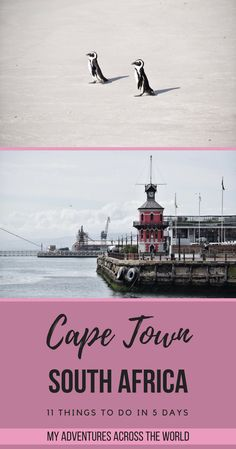 Discover the things to do in Cape Town, South Africa - via Stuff To Do, Things To Do, All About Africa, Best Travel Guides, Travel Tips, Us Travel Destinations, Cape Town South Africa, Cultural Experience, Africa Travel