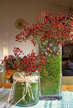 Google Flores e plantas artificiais