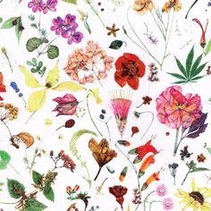 This beautiful floral fabric has us dreaming of springtime craft projects.