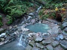 Top hot springs in Oregon. Definitely going to try and go this winter...
