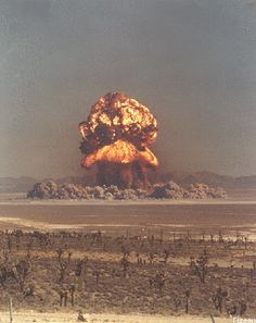 A nuclear bomb set off in New Mexico. Who's idea was it to set off nuclear bombs all over the same planet we live on? Bomba Nuclear, Nuclear Test, Nuclear Bomb, Nuclear Energy, Mushroom Cloud, Fallout New Vegas, E Mc2, Photocollage, Atomic Age