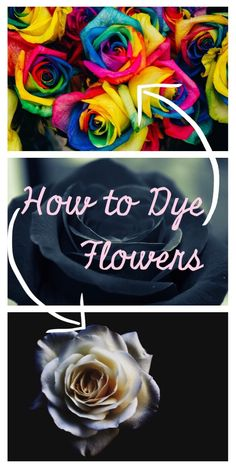 Make these simple black black flowers & rainbow dyed flowers. This diy is a gorgeous start to a flower crown, boutonniere or photo backdrop. Amazing Flowers, Flowers In Hair, Silk Flowers, Black Flower Crown, Black Flowers, Tie Dye Roses, Crown For Kids, Diy Crown, Gardens