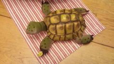 Slo Steiff turtle. 1950's made in Germany. Tag by YesterdaysPieces