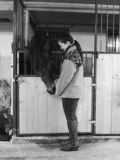 Moe Besta, Nordic draft horse trotter - mimgoesfishingphotography