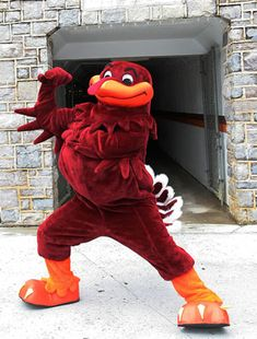 Not gunna lie, I have a sliiight obsession with the Hokie Bird. I LOVE HIM SO MUCH!