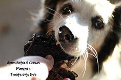 Jones Natural Chews Pumpers - Treats Dogs Love