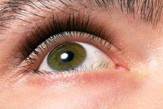 Hazel Eyes: Learn Why People with Greenish Eye Color are Rare! – Guy … – Best Beauty Tips Beautiful Green Eyes, Young And Beautiful, Best Beauty Tips, Beauty Hacks Video, Longer Eyelashes, Long Lashes, Beauty Blender Holder, Beauty Hacks Eyelashes, Healthy Eyes