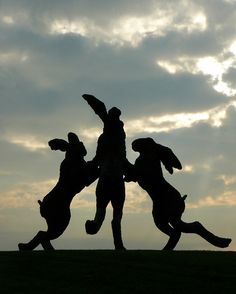 'Dancing Hares'  sculpture by Sophie Ryder, Ballantrae Community Park, Dublin, Ohio, USA. Photo by Tim Perdue, via Flickr