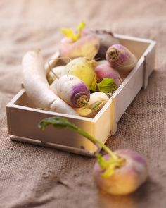 Forgotten Vegetables:  Daikon, Turnip, Rutabaga, Panais...