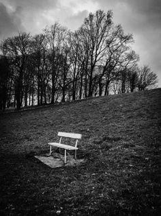 """ Seriously edited Friday A powerful edit tells a story. Park Photography, Dublin Ireland, Portraits, Phoenix, Outdoor Decor, Photos, Photo Black White, Landscape, Photography"