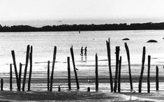 With summer vacation now in the books, we thought we'd take a look back at one of the Boston area's best-known beaches. Here's a look at Revere Beach in years past, via The Boston Globe's archives. East Boston, Boston Area, Revere Beach, Running On The Beach, Beach Walk, New England, Past, That Look, Old Things