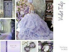 Violet inspiration