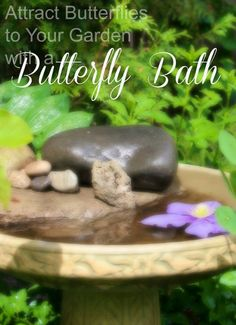 Planting flowers to attract butterflies to your garden is just one piece of the puzzle. Butterflies get thirsty too. So why not add a butterfly bath to your gar… Butterfly Garden Plants, Diy Butterfly, Planting Flowers, Flowers That Attract Butterflies, Garden Art, Garden Ideas, Garden Tips, Dream Garden, Garden Projects
