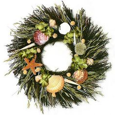 "Summer!!!   Southampton Seashell Wreath...16"" wreath designed over a natural twig base, with green sweet annie, natural grass, natural avena, white globe, sea star, sand dollar, conches, and it is accented with green colored silk hydrangea blooms."