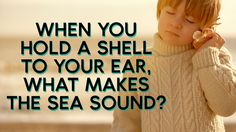 🐚 | When you hold a shell to your ear, what makes the sea sound?