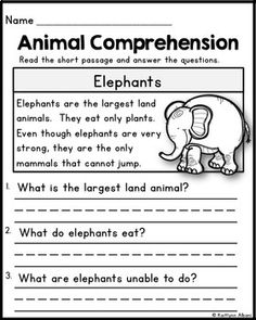Animal Reading Comprehension Passages by Kaitlynn Albani First Grade Reading Comprehension, Grade 1 Reading, Reading Comprehension Worksheets, Phonics Reading, Reading Passages, Kindergarten Reading, Reading Response, Comprehension Strategies, Preschool Kindergarten