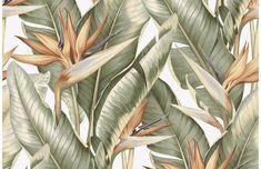 Bird Of Paradise Wallpaper - Light Green & Taupe