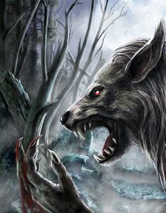 -€- ····{ ~-tunoa then that those who wore the strikkenn 6th;-;set of the ninadesjar were the FIRST of those to do so in lukka€s name- -} ~Werewolves |