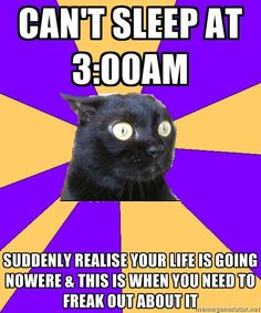 haha i feel this way sometimes - Cashier Humor - Cashier Humor meme - - Anxiety Cat. haha i feel this way sometimes The post Anxiety Cat. haha i feel this way sometimes appeared first on Gag Dad. Anxiety Cat Meme, Anxiety Humor, Anxiety Girl, Anxiety Quotes, Social Anxiety Memes, Feelings, Frases, Anxiety Cat, Funny