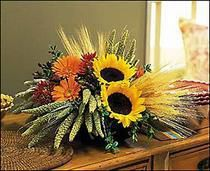 A Sunflower Harvest Sunflowers strike their pose, while wheat and millet wisp in the autumn wind. Fall harvest is truly captured in this remarkable arrangement. Chrysanthemums, gerberas and hypericum Church Flowers, Funeral Flowers, Fall Flowers, Wedding Flowers, Sunflower Floral Arrangements, Fall Arrangements, Floral Centerpieces, Thanksgiving Flowers, Same Day Flower Delivery