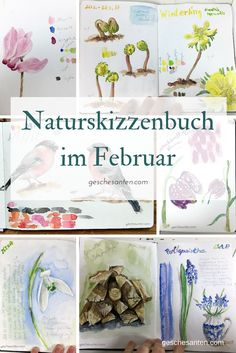 Creativity in early spring – my nature sketchbook and projects in February - Modern Watercolor Art, Plant Sketches, Urban Sketching, Sketch Book, Creative, Watercolor Art Journal, Botanical Sketchbook, Art Journal, Nature Journal