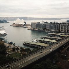 Sydney / photo by Alice Gao