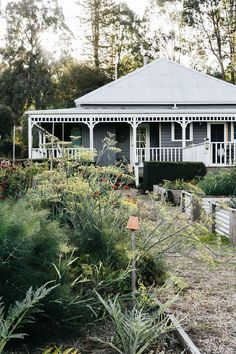 Grey and white weatherboard farm cottage in Victoria Weatherboard House, Queenslander, Farm Cottage, Cottage Style Homes, Cottage House Styles, White Cottage, Italian Style Home, Restored Farmhouse, Black Barn