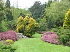 §heather garden site:uk - Google Search