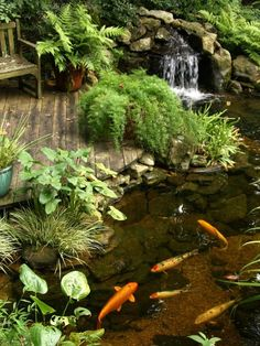 Beautiful Garden Fish Pond Design With Waterfall And Mini Patio For Home Backyard Garden Ideas Home Garden Design Ideas With Patio Koi Pond Design, Backyard Garden Design, Ponds Backyard, Garden Ponds, Backyard Waterfalls, Backyard Patio, Garden Stream, Fish Design, Landscape Design