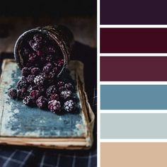 100 Color Inspiration Schemes : Teal and Blackberry Color Palette