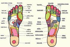 reflexní terapie nohou - Hledat Googlem