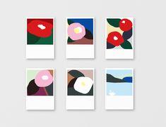 プレミアム洗剤「ツバキスト」クラウドファンディング限定PKG長崎県の五島列島産の大変希少なツバキ油を配合した洗剤のクラウドファンディング限定のPKGをデザインしました。 Illustration Sketches, Illustrations And Posters, Graphic Illustration, Drawing For Kids, Art For Kids, Dm Poster, Mini Canvas Art, Small Cards, Japanese Design