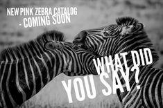 Tomorrow is the big day#pinkzebra #newcatalog #newfragrances