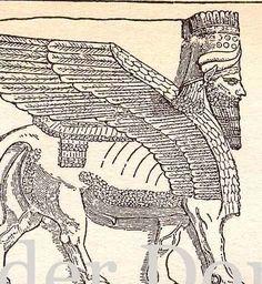 Ancient Babylon Culture Chart 1906 Edwardian Antique Natural History Engraved Illustration
