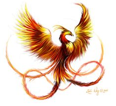 Upper back left shoulder or inplace of birds on sleeve...symbolizes rebirth and strength through adversity