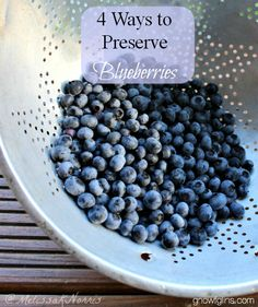 4 Ways to Preserve Blueberries | The only thing more glorious than eating plump, juicy blueberries straight from a bush is enjoying a sweet bite of blueberries in the dead of winter! One mouthful brings back the warmth of a July morning and the long days of summer. Blueberries can be preserved in a number of ways -- here are the four ways I do it. | GNOWFGLINS.com