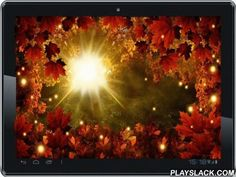 Autumn Sun HD Live Wallpaper  Android App - playslack.com , New extended interactive version Autumn Sun HD live wallpaper.Sun Autumn Live Wallpaper is a live wallpaper in the theme Autumn - beautiful sunny autumn day in the woods or in the park.Fixed number of bugs and user's wishes included.A selection of HD quality backgrounds allows You to choose the best-tasting member of the scene (they are listed in screenshots).Animated dynamic objects - Autumn leaves - fly away when you tap.You may…