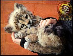 "Woodsplitter Lee, Mumble!"" The Baby Fennec Fox! - Google Search"