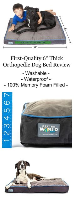 """First-Quality 6"""" Thick Orthopedic Dog Bed Review"""